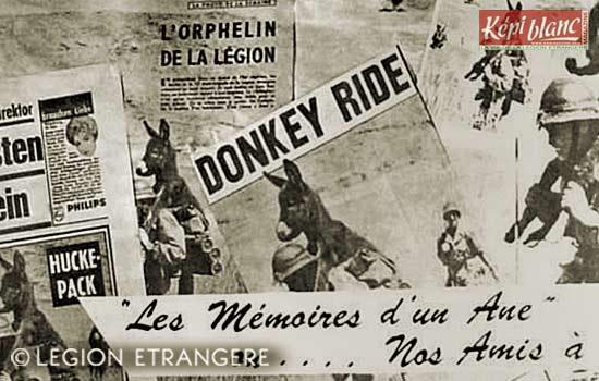 13e DBLE - 13 DBLE - Algeria - Bambi - 1958