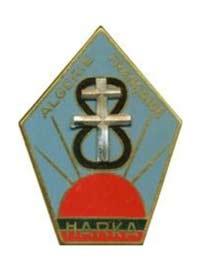 13e DBLE - 13 DBLE - insigne - insignia - Harka - 1958