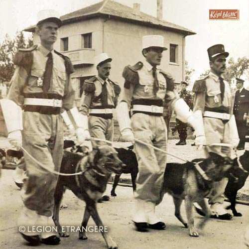 5e REI - 5 REI - 5th Foreign Infantry Regiment - 5th REI - Foreign Legion Etrangere - Dog Platoon -1959 - Ouarsenis - Algeria