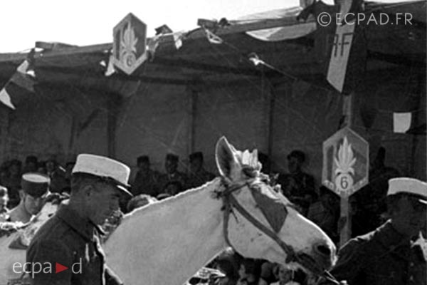 6e REI - 6 REI - Legion Etrangere - 1940 - Insigne - Camerone - Homs