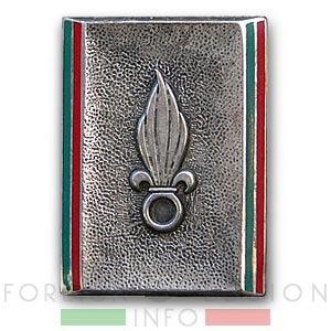 Dépôt Commun des Régiments Etrangers - DCRE - Legion Etrangere - Insigne - 1947