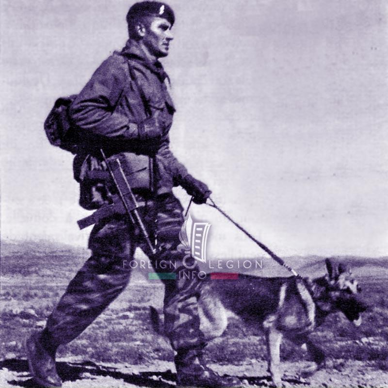 13e DBLE - 13 DBLE - Foreign Legion Etrangere - 1961 - Algeria