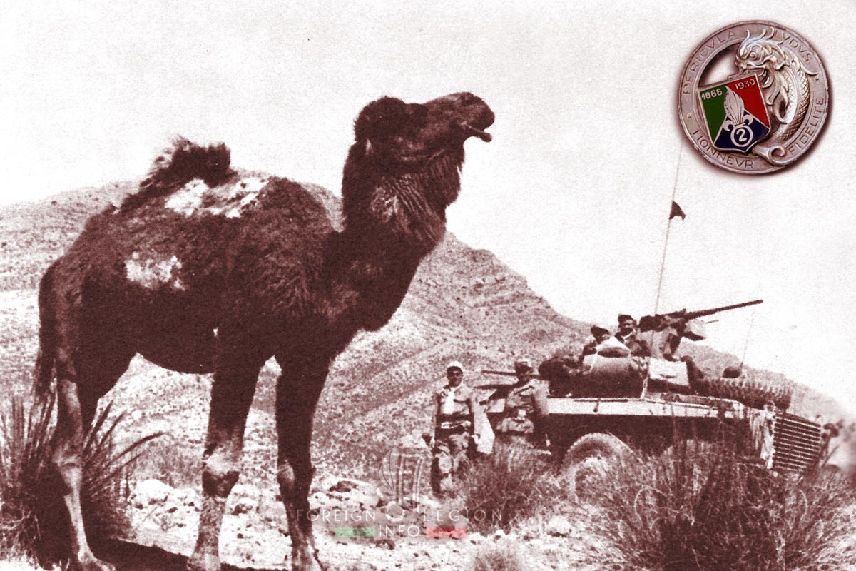 2e REC - 2 REC - Foreign Legion Etrangere - 1959 - Algeria