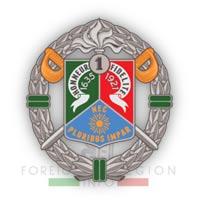 1er REC insignia