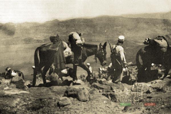 Mounted Company - Legionnaire - Mule - Morocco